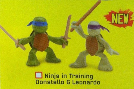 upcomingtmnt-ninjasintraining-leo-donnie