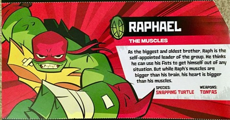 rise_of_the_tmnt_toys_raph_profile