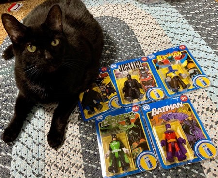 imaginext_batman_singles_sarah