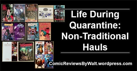 life_during_quarantine_non_traditional_hauls_blogtrailer